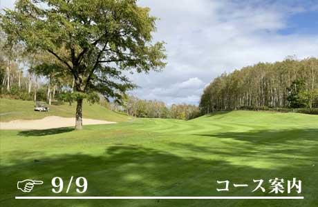 https://anchor-golf.com/gwp/wp-content/uploads/2021/07/post_227-12.jpg