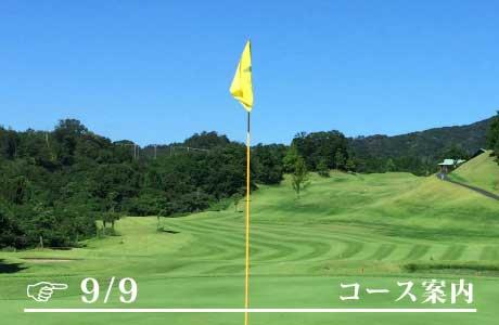 https://anchor-golf.com/gwp/wp-content/uploads/2021/07/post_585-12.jpg